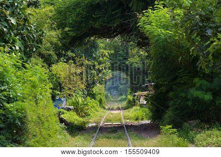 Old railway in a deep greenery tunnel near Bangkok, thailand