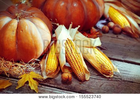 Pumpkin, Squash. Happy Thanksgiving Day Background. Autumn Thanksgiving Pumpkins over wooden background, still-life. Beautiful Holiday Autumn festival concept scene Fall, Harvest