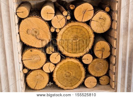 Fire wood. Home living concept. wood in the fireplace