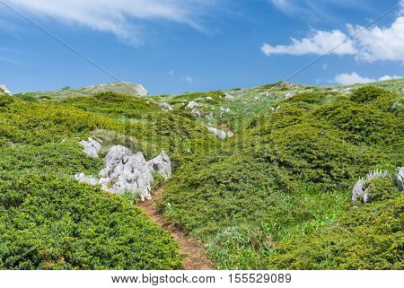 Spring landscape with hiking path in Crimean mountains.