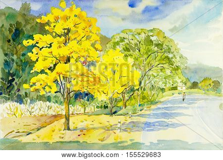 Watercolor painting original landscape yellow orange color of golden tree flowers in sky and cloud background