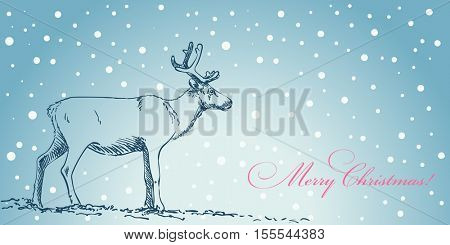Christmas card hand drawn reindeer on blue winter background
