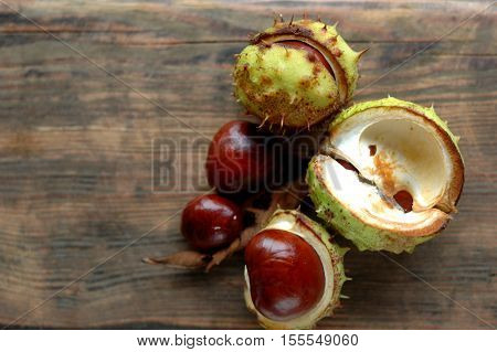Several ripe chestnuts on a wooden background.