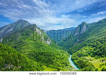 Green hills and mountain river Tara in Montenegro. Natural landscape