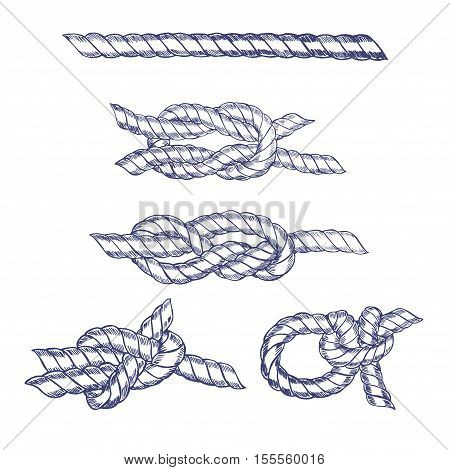 Sea Knot Blue Twisted Rope Hand Draw Sketch. Vector illustration
