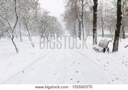 Red benches in a park covered with snow during snowfall