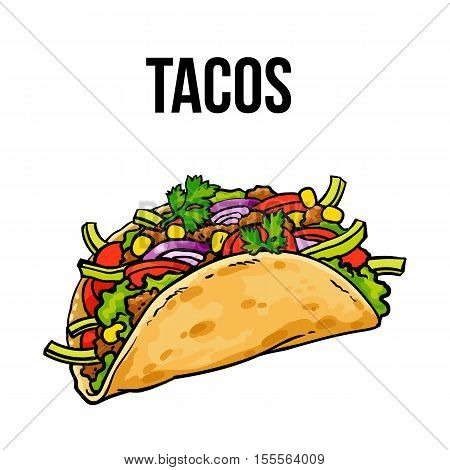 Taco, traditional Mexican food, ground meet with vegetables in folded tortilla, sketch style vector illustration on white background. Hand drawn Mexican taco - corn or wheat tortilla with meat filling