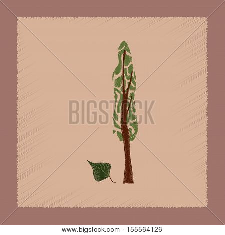 flat shading style Illustrations of plant Populus