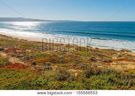 Monterey California. Bay of the Pacific Ocean