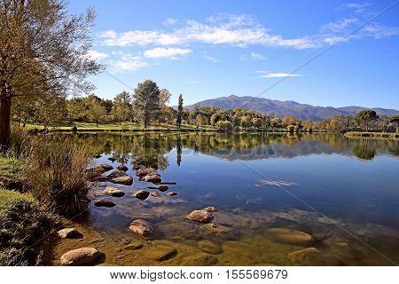 lac de montagne bordé d'arbres ciel bleu et temps ensoleillé
