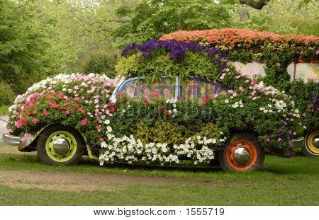 Flower Covered Bug
