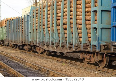 Freight Train Loaded With Pine Trunks. Environment, Nature And Deforestation Forest - Felling Of Tre