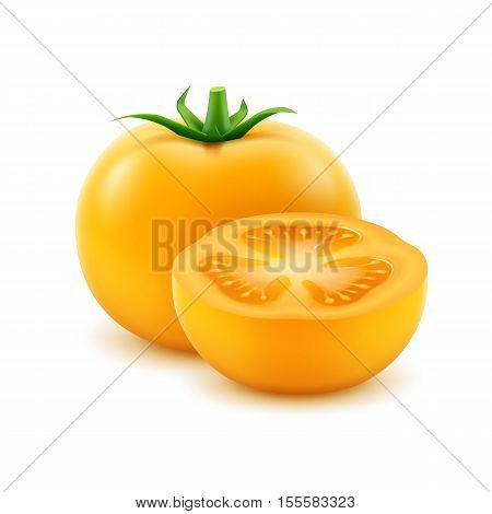 Vector Big Ripe Yellow Fresh Cut Tomato Close up Isolated on White Background