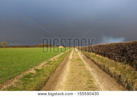 Rain Cloud And Bridleway