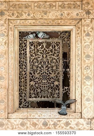 Ornament lattice window with doves in a historic building Rajasthan India
