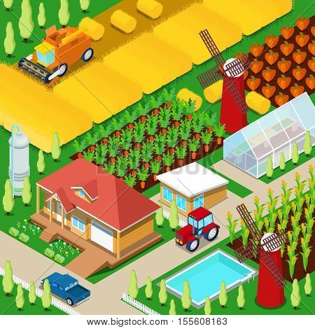 Isometric Rural Farm Agricultural Field with Greenhouse and Windmill. Vector 3d flat illustration