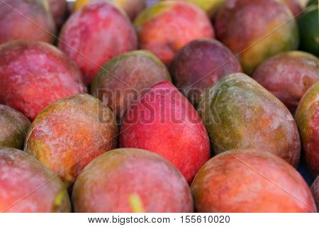 Mango Background