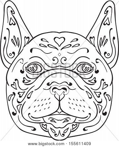 Mandala style illustration of a french bulldog head viewed from front set on isolated white background.