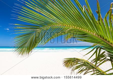 Perfect Caribbean Beach