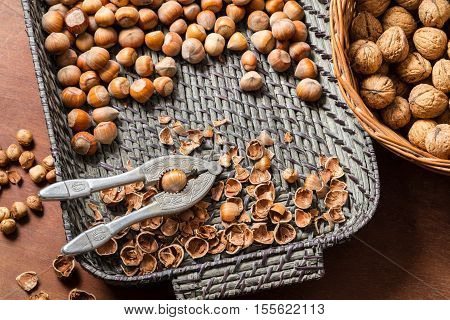 Cracking nuts hazelnuts in wicker basket on old wooden table