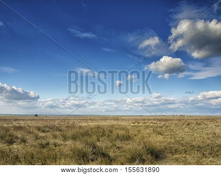 Yellow fields under a dramatic blue sky with white clouds nearby the ancient greek colony of Histria, on the shores of Black Sea. Histria is the oldest urban settlement on Romanian territory