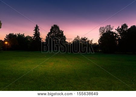 nice amazing inviting view of twilight time in outdoor park