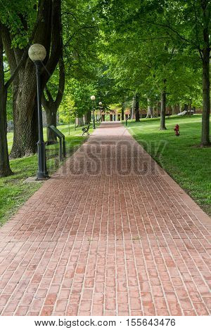 Brick Pathway Through Park during summer afternoon