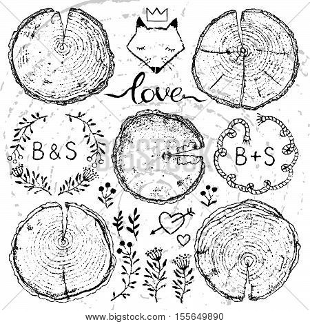 Vector set of hand drawn wood splits with rings for your design isolated on white backdrop