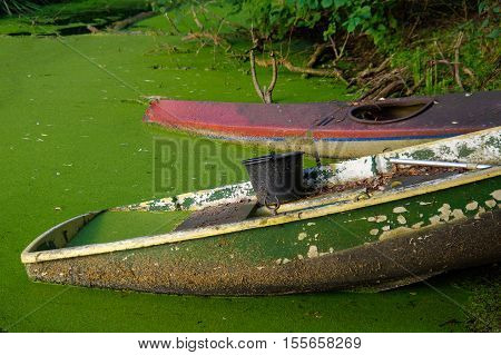Old canoe ashore the pond is almost sunk