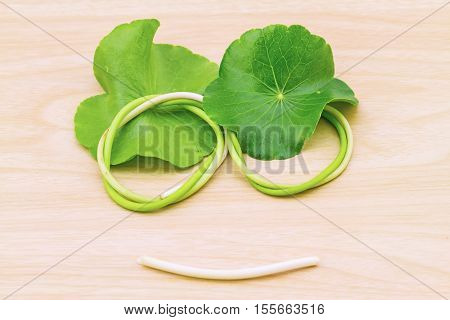Smiling shape of Green Asiatic Pennywort leaf (Centella asiatica ) on white background