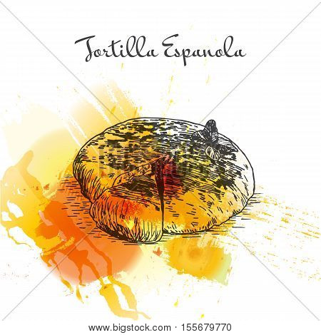 Tortilla Espanola colorful watercolor effect illustration. Vector illustration of Spanish cuisine.