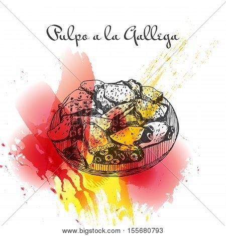 Pulpo a la gallega colorful watercolor effect illustration. Vector illustration of Spanish cuisine.