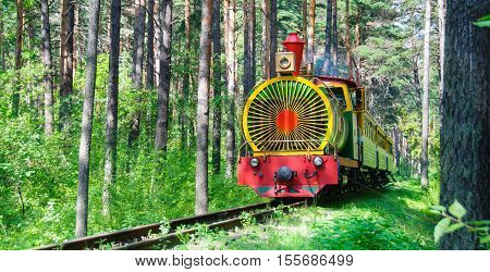Train in the summer forest among the trees
