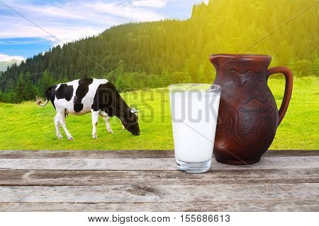 Milk in glass and clay jug on old wooden table with grazing cow on the meadow with sunshine in background. Crock and glass of milk on wooden table with cow. Milk on the background of grazing cow. Milk