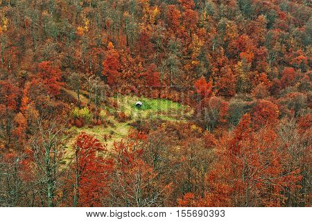 Lonely Cottage In The Red Autumn Carpathian Mountains