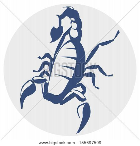Scorpion,  image for the tattoo, symbol or logo