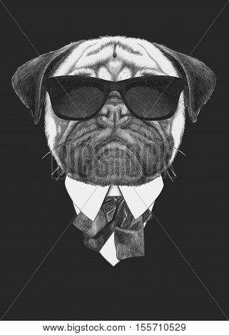 Portrait of Pug in suit. Hand drawn illustration.