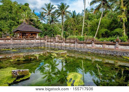 Balinese Hindu families come to the sacred springs of Tirta Empul in Bali