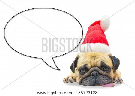 merry christmas and happy new year 2017 Postcard with Pug dog sleep rest in Santa Claus hat with copy space for label text on speech balloon