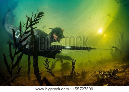Underwater shot of the hunter with spear gun in a lake
