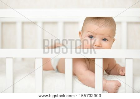 Cute baby on a tummy in a white cot looking across the room through the wooden frame itching gums sucking the wooden board of the cot teething proccess. Family baby development concept photo poster