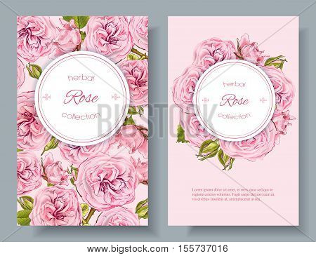 Vector rose natural cosmetic vertical banners on pink background. Design for cosmetics make up beauty salon natural and organic products health care productsaromatherapy. With place for text