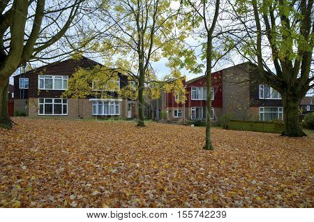 Bracknell,England - November 09, 2016: Semi detached homes on a housing estate in Bracknell, England with Autumn leaf fall under the trees