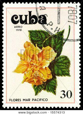 Vintage  Postage Stamp. Tues Flowers Pacifist. 1.