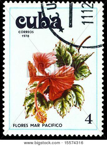 Vintage  Postage Stamp. Tues Flowers Pacifist. 2.