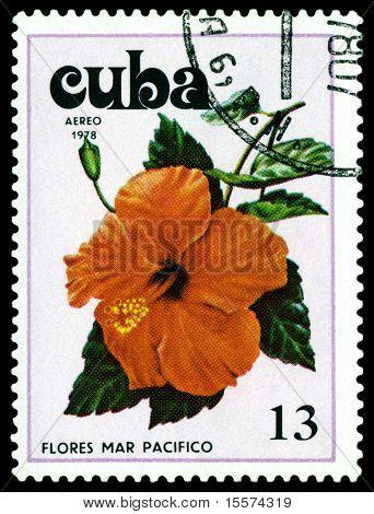 Vintage  Postage Stamp. Tues Flowers Pacifist. 3.