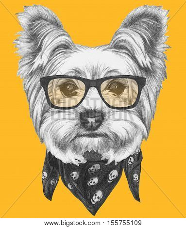 Portrait of Yorkshire Terrier Dog with glasses and scarf. Hand drawn illustration.