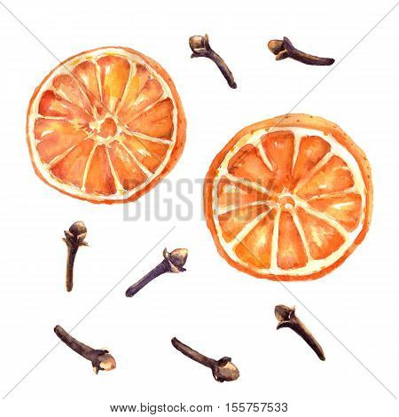 Watercolor set of christmas spice. Orange and cloves hand painted illustration on white background