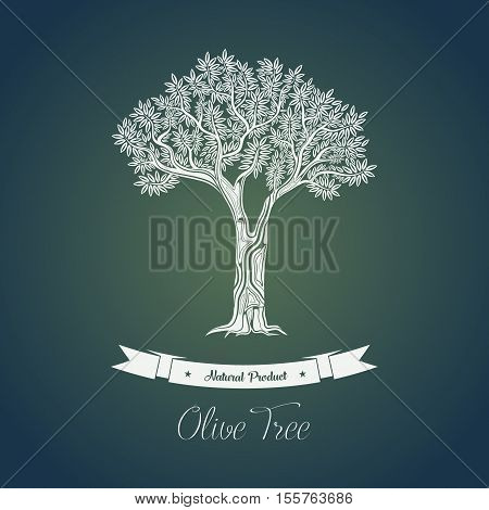 Ancient greece olive oil tree in grove for bottle sticker. Mediterranean plant with fruits and berries for making olive oil. May be used for olive tree logo or oil liquid banner, vegetarian theme