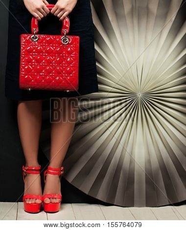 Glamorous Female Accessories. Red Handbad and Shoes